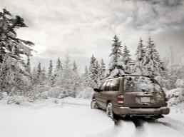 Auto-Snowyforest-suv-1-1