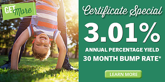 3.01% APY Certificate Special